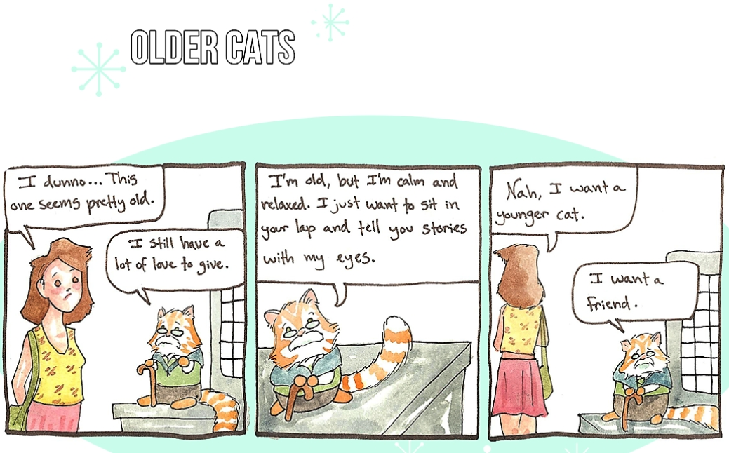 older_cats